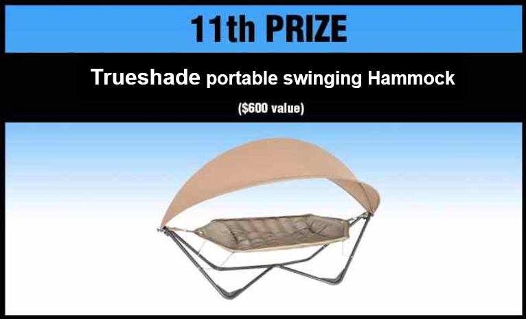 11th_place_prize.png